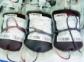 Bolsas de Sangue