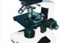 Microscópio Biológico Binocular