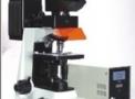 Microscópio Biológico TNI-06T-PL