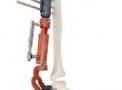 Dinâmico Angular Rotacional Articulado para Tornozelo - Cromus