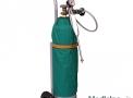 Criocautério Ginecológico CM-60 (Acompanha Carrinho para Transporte) - Microem
