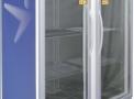 BT-1100/1500 – CÂMARA PARA CONSERVAÇÃO DE IMUNOBIOLÓGICOS, TERMOLÁBEIS E HEMODERIVADOS