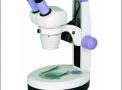 Estereoscópio Binocular 10X, 20X, 40X a 80X