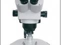 Estereoscópio Trinocular com Zoom 10x Até 160x