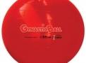 Bola Gynastic Ball 55cm