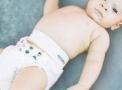 imagem de Cinta para Hérnia Umbilical Infantil 241