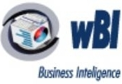 Software Business Intelligence