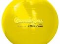 imagem de Bola Gynastic Ball Ø45cm
