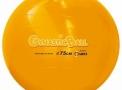 imagem de Bola Gynastic Ball Ø75cm