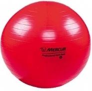 Bola Suiça para Fisioterapia 2d0e1f92b9ab1