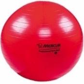 Bola Suiça para Fisioterapia, Pilates, Bobath e Yoga - 55cm (Cód. 708)