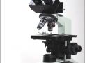 Microscopio Triocular 1600x com platina movel