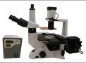 Microscópio Biológico invertido de Fluorescência ProdutosMed