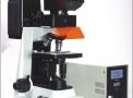 Microscópio Biológico Trinocular Imunofluorescência Objetivas Planacromáticas