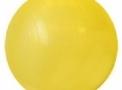 Bola de Ginástica para Fisioterapia, Pilates, Bobath - 55cm (Cód. 1037)
