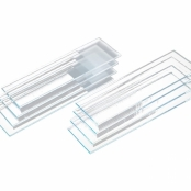 Lâmina para microscopia com ponta fosca - Labor Import