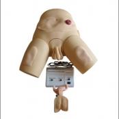 Simulador para Cateterização Bissexual, luzes de controle