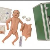 Manequim bissexual com órgãos internos Bebê em Resina Emborrachada