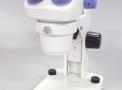 imagem de Microscópios Estereoscópios Com Zoom (...)