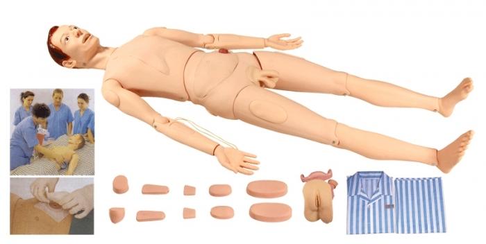 Modelos Anatômicos  Enfermagem e Resgate  COL 2100 - Manequim Adulto Bissexual com Órgãos Internos