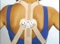 imagem de Espaldeira Elástica para Postura