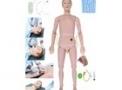 Manequim para simulação Bissexual com órgão internos TZJ0502 – Anatomic