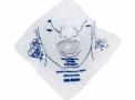 Máscara de RCP Descartável